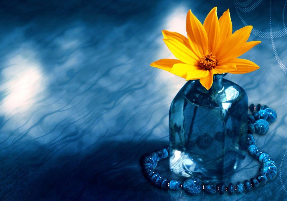 Gele bloem in glazen vaas op blauwe achtergrond. Opgroeien, emoties en de ziel wacht