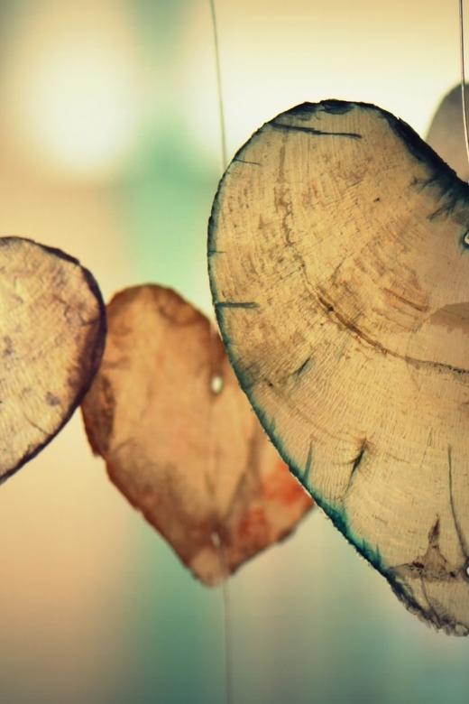 Het allermooiste hart