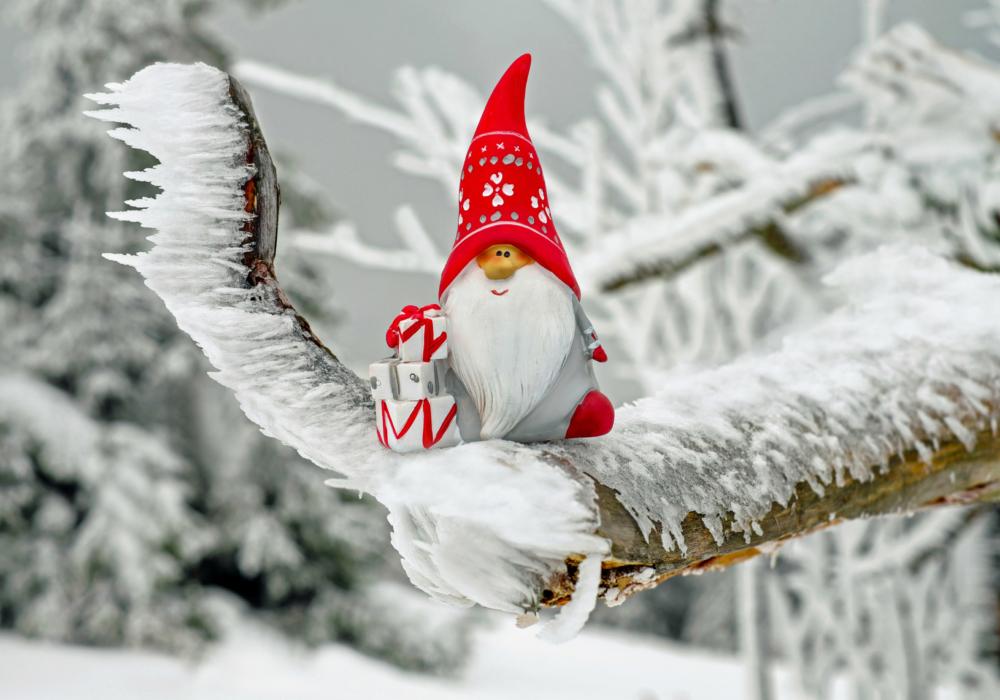 Kerstmis-tafereel: een kerskabouter op een besneeuwde tak