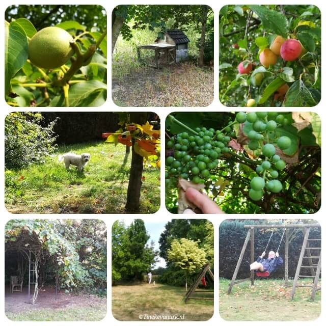 Collage van onze tuin in Ringe
